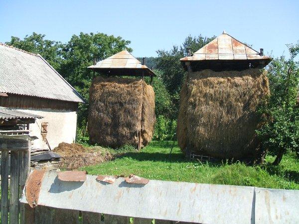 Maison traditionelle roumaine avec foin